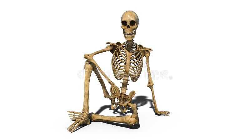 La seduta di scheletro divertente sulla terra e sorridere, scheletro umano isolato su fondo bianco, 3D rendono illustrazione di stock