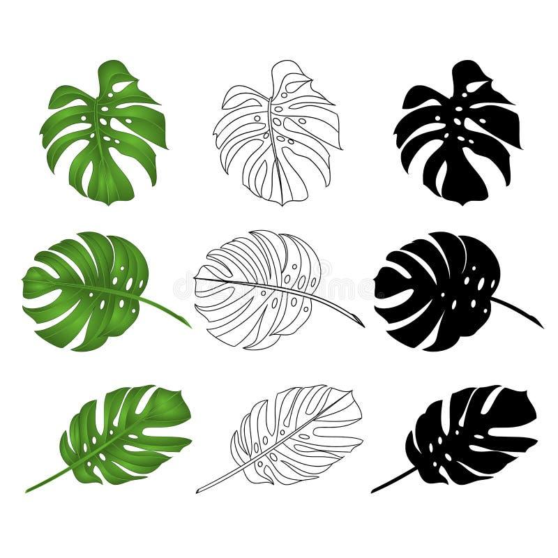 La selva tropical del Philodendron se va natural y esquema y a silueta en el ejemplo blanco del vector del fondo editable stock de ilustración