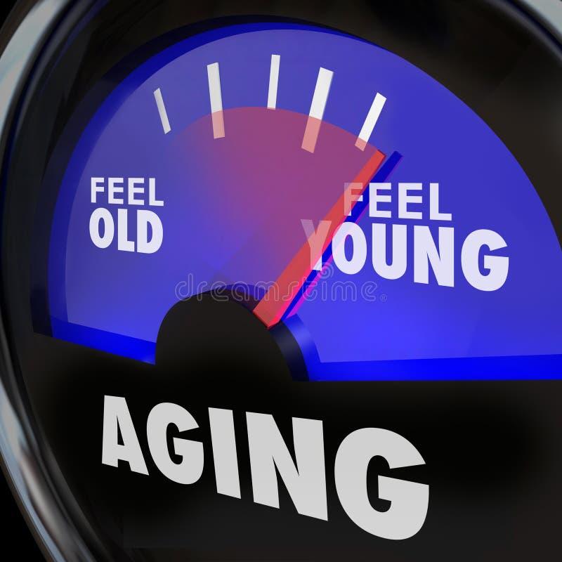 La sensación de envejecimiento del indicador vieja contra jóvenes mantiene vitalidad de la energía de la juventud ilustración del vector
