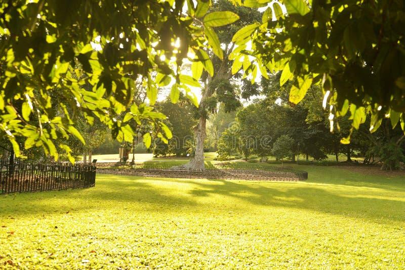 La serie de la ciudad jardín imagen de archivo