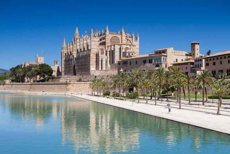 La Seu - catedral de Palma fotografia de stock royalty free