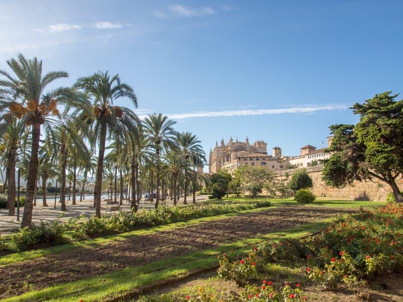 La Seu - domkyrka av Mallorca arkivbild