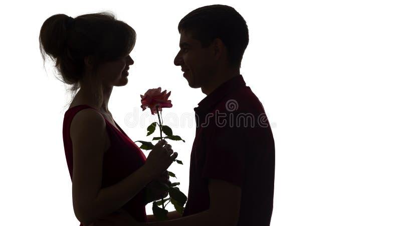 La silhouette d'un jeune couple dans l'amour sur le fond d'isolement blanc, homme donne à une femme une fleur rose, amour de conc image libre de droits