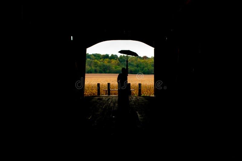La silhouette d'une femme avec un parapluie examinant les champs photos libres de droits