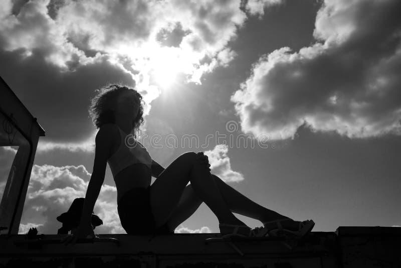 Download La Silhouette D'une Fille Sexy De Belle Ferme Se Repose Sur La Machine Photo stock - Image du pré, affermage: 45355004