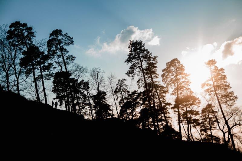 La silhouette de la forêt et les arbres dans le coucher du soleil avec les figures des amants de personnes marchent au coucher du photo libre de droits
