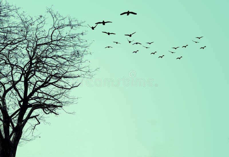 La silhouette de l'arbre sur un fond bleu illustration de vecteur