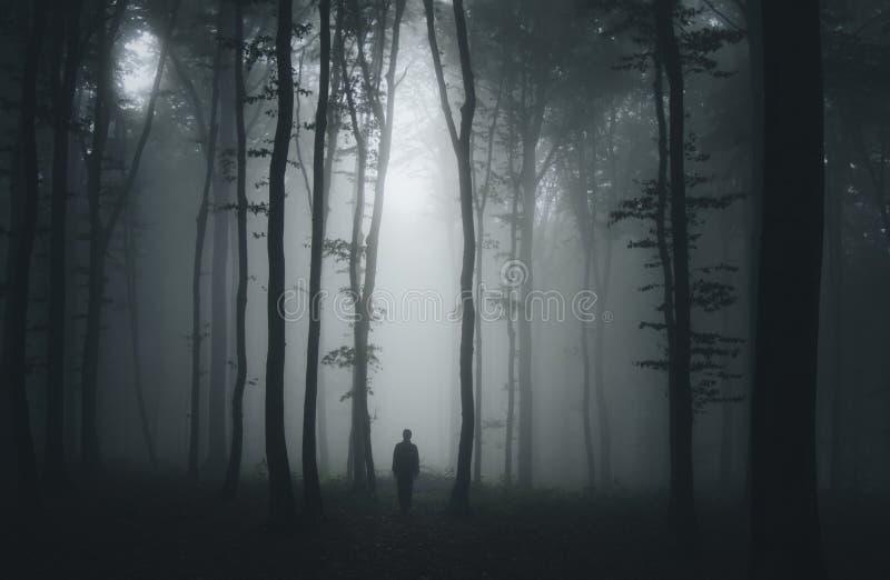 La silhouette de l'homme dans l'obscurité a hanté la forêt effrayante la nuit de Halloween photo stock