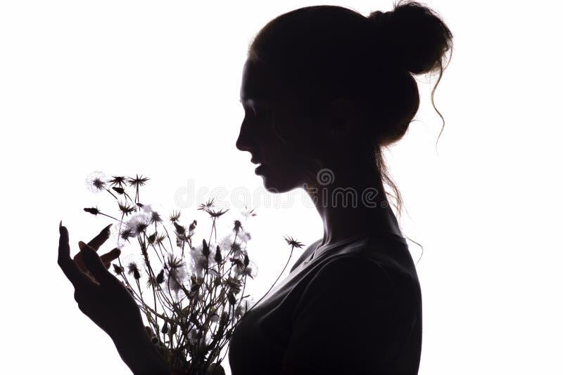 La silueta de la muchacha con un ramo con de dientes de león, cara de la mujer joven en un blanco aisló el fondo imágenes de archivo libres de regalías