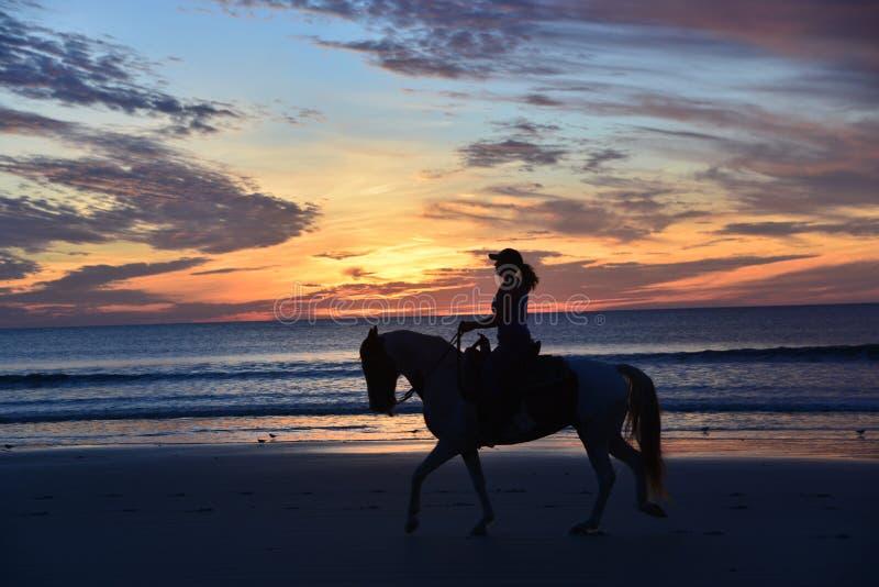 La silueta del caballo y del jinete es una imagen dramática de hecho fotos de archivo libres de regalías
