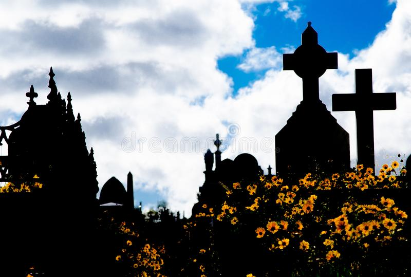 La silueta del cementerio, la imagen muestra a muchos la piedra sepulcral y el campo cruzados de la flor amarilla de la margarita foto de archivo