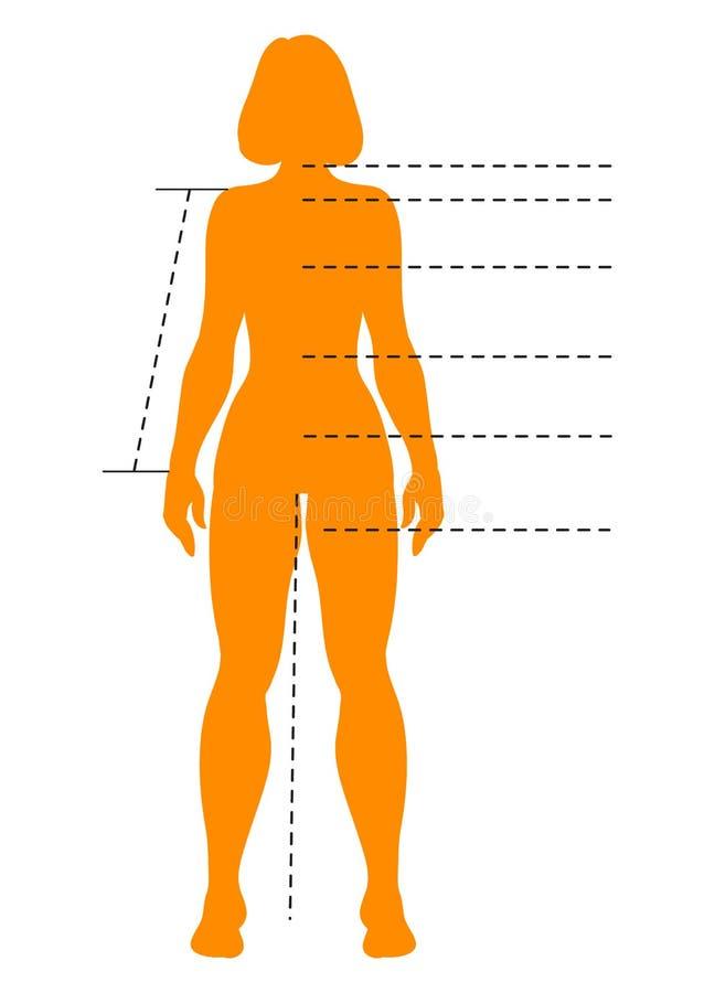 La silueta del cuerpo de la mujer con los indicadores para médico, infographics se divierte, de la moda y de la aptitud Plantilla ilustración del vector