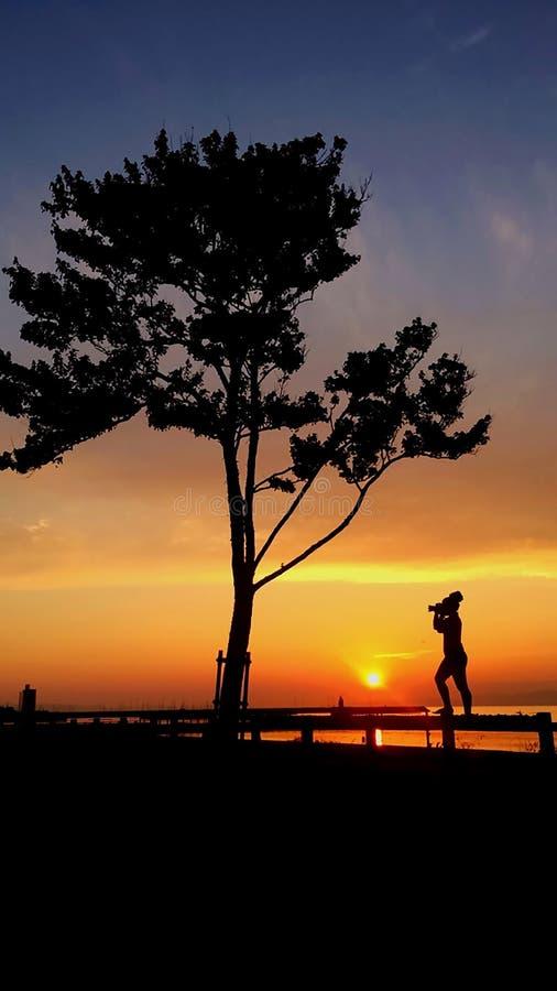 La siluetta della donna prende a foto il bello tramonto alla spiaggia immagine stock