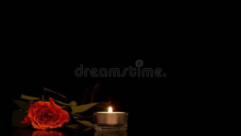 La singola arancia romantica è aumentato con una candela bruciante immagini stock libere da diritti