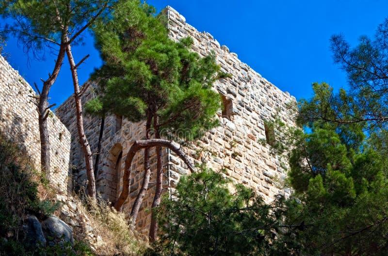 La Siria - castello di Saladin (baccano dell'annuncio di Qala'at Salah) fotografie stock libere da diritti