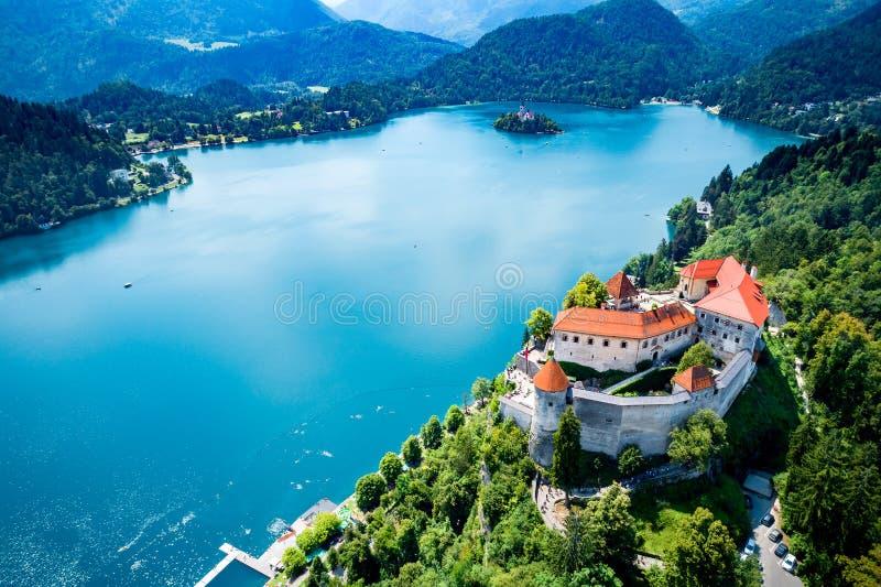 La Slovenia - lago della località di soggiorno sanguinato immagini stock libere da diritti
