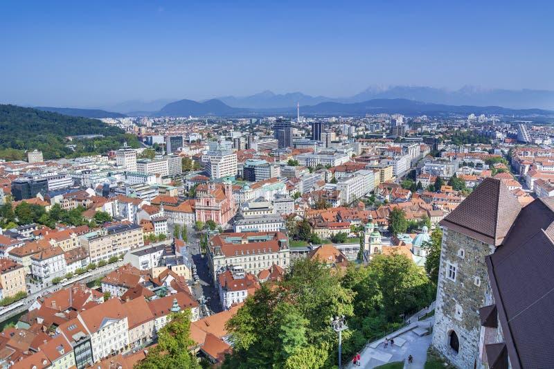 La Slovenia, Transferrina immagine stock