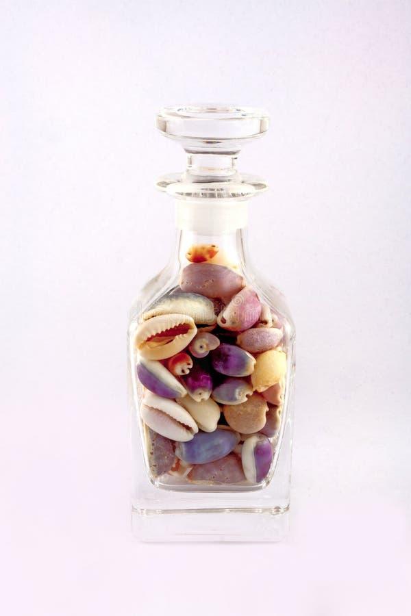 La sola botella de cristal capsulada llenó de las cáscaras de Colourfull Cowry imagenes de archivo