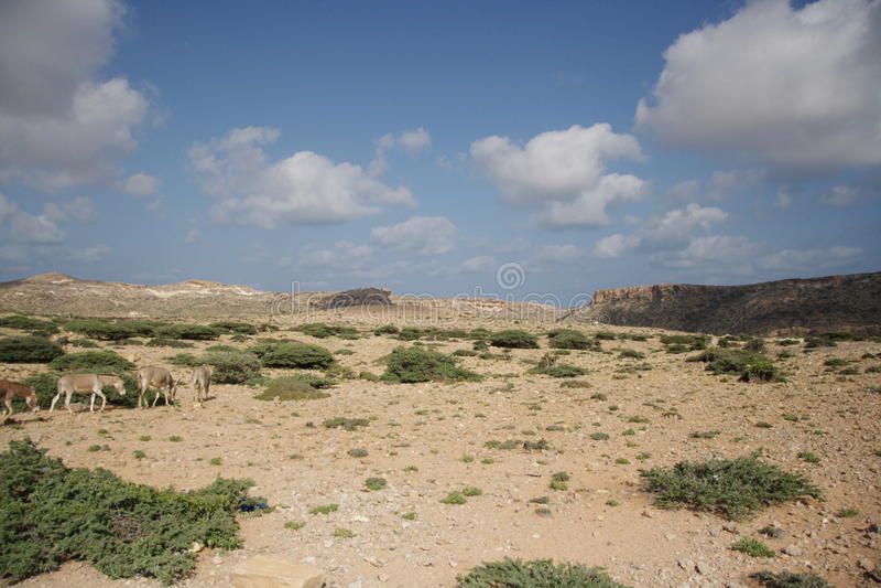 La Somalia è un paese dei pirati fotografia stock libera da diritti