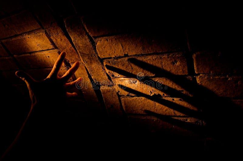 La sombra fotografía de archivo libre de regalías
