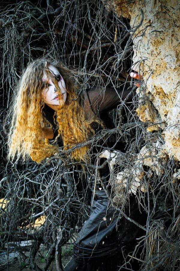 La sorcière dans la forêt foncée Halloween photo libre de droits
