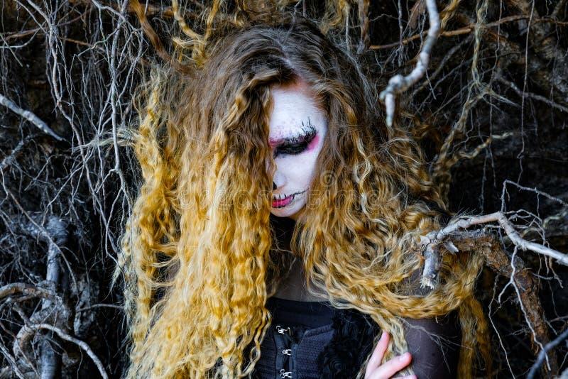 La sorcière dans la forêt foncée Halloween images libres de droits