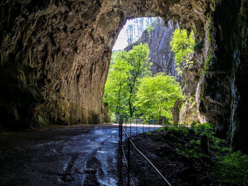 la sortie des cavernes skocjan photographie stock libre de droits