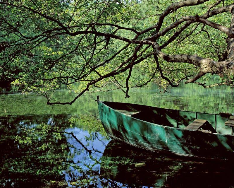La source d'Ohrid. photo libre de droits
