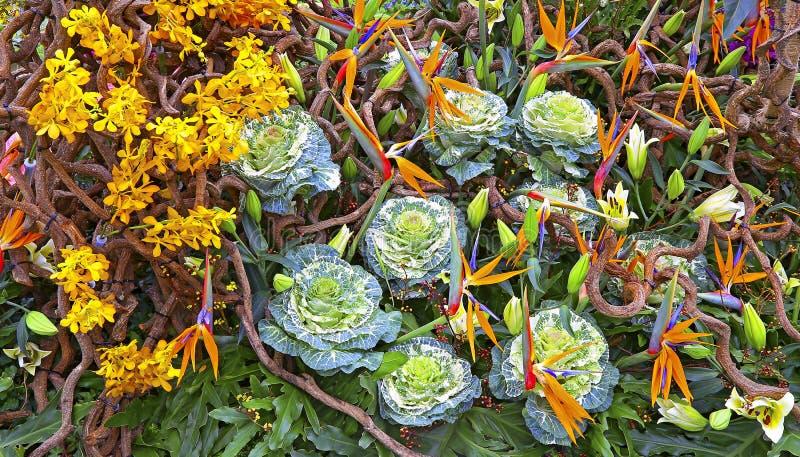 La source fleurit le bouquet photos stock