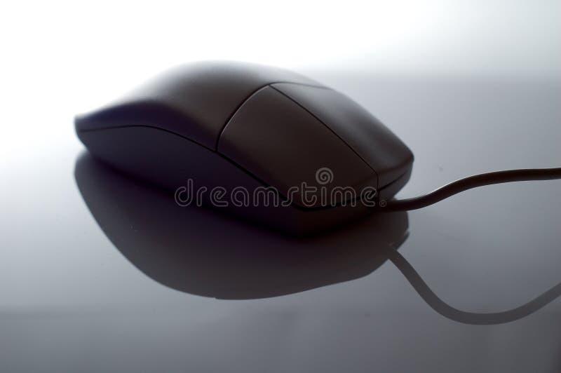 La souris d'ordinateur a éclairé à contre-jour images stock