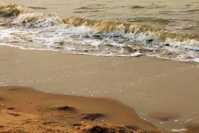 La spiaggia dorata in Den Haag fotografie stock libere da diritti