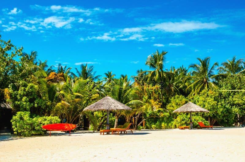 La spiaggia sabbiosa esotica con rosso sta sul bordo di pagaia immagini stock
