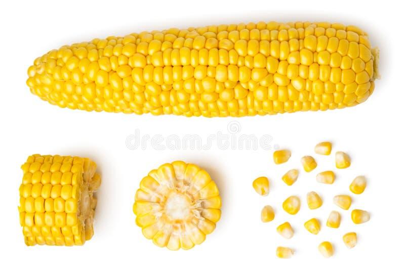 La spiga sbucciata del granoturco, di un pezzo di e dei semi su un bianco, isolati La vista dalla parte superiore fotografie stock