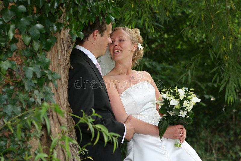 La sposa e lo sposo fotografie stock libere da diritti