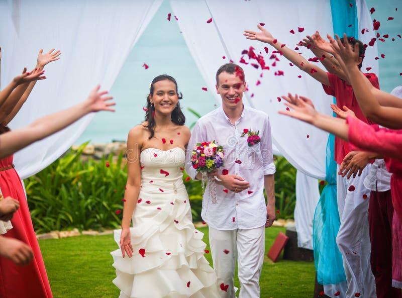 La sposa e lo sposo dopo la cerimonia di nozze Gli ospiti hanno inondato le persone appena sposate dei petali rosa fotografia stock libera da diritti
