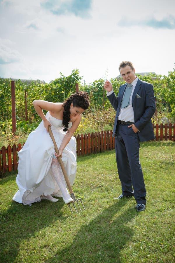 La sposa e lo sposo scava il suolo su un orto domestico immagine stock