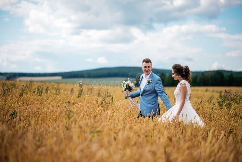 La sposa e lo sposo stanno camminando nel giacimento di grano fotografia stock libera da diritti