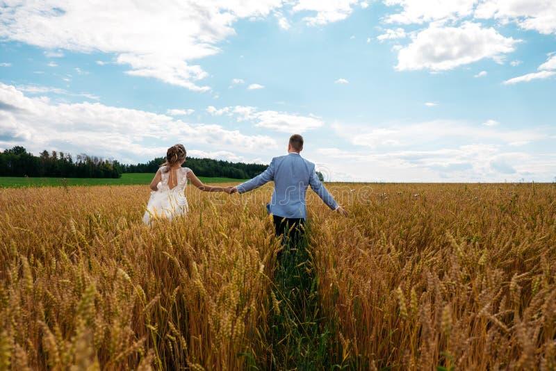 La sposa e lo sposo stanno camminando nel giacimento di grano Vista dalla parte posteriore immagini stock libere da diritti