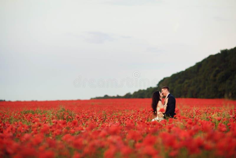 La sposa e lo sposo in un papavero sistemano fotografia stock libera da diritti