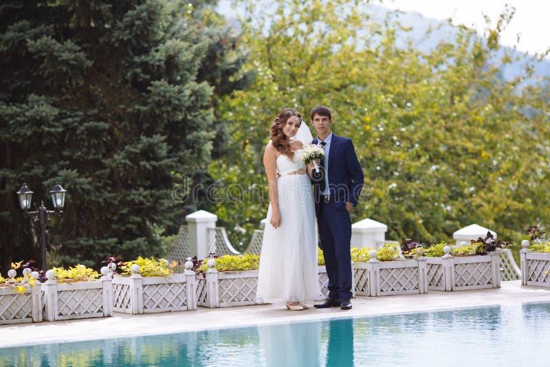 La sposa e lo sposo in vestiti da sposa che posano contro lo sfondo di grandi vecchi alberi, pieni d'ammirazione la bellezza dell fotografia stock