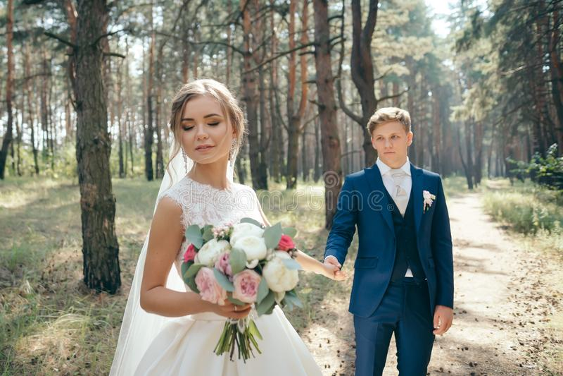 La sposa e lo sposo in vestiti da sposa su sfondo naturale Giorno delle nozze Le persone appena sposate stanno camminando attrave immagini stock libere da diritti