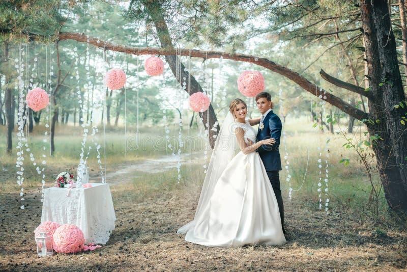 La sposa e lo sposo in vestiti da sposa su sfondo naturale Noi immagine stock