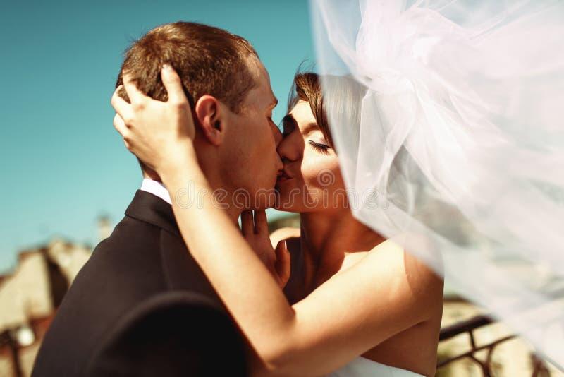 La sposa sbalorditiva bacia uno sposo che tiene la sua offerta della testa fotografia stock libera da diritti
