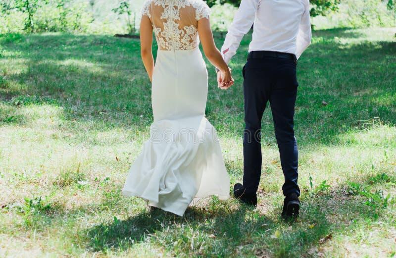 La sposa in vestito elegante dal pizzo sta camminando con lo sposo nelle tonalità verdi della foresta Coppie di nozze nella stori immagini stock libere da diritti