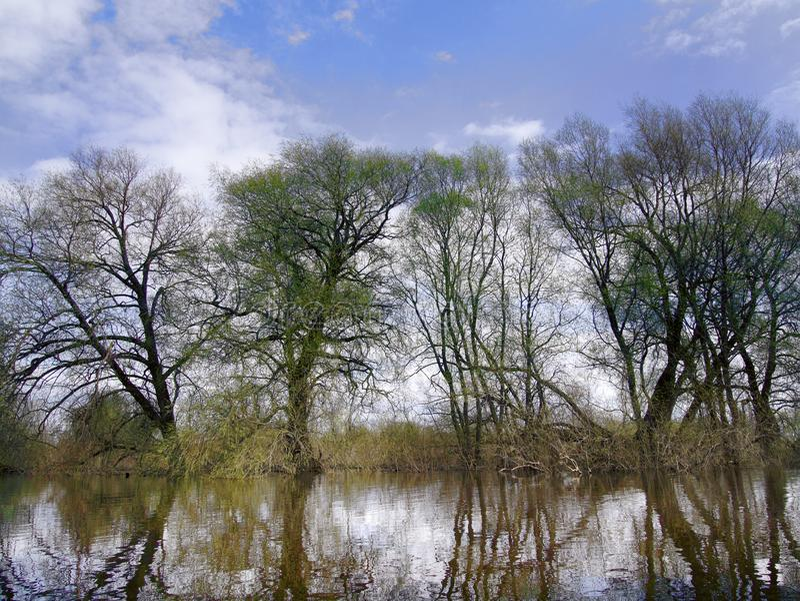 La stagione dell'acqua alta della molla sul fiume immagini stock libere da diritti