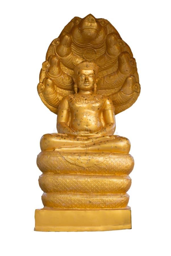 La statua di Buddha dell'oro che si siede su sette teste serpeggia isolato su fondo bianco immagine stock libera da diritti