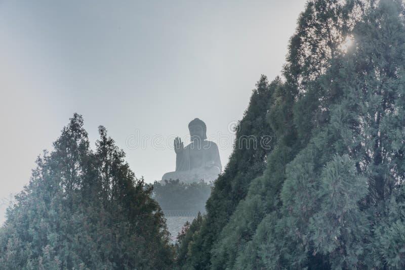 La statua di Buddha di seduta più grande nella parola su un fiore di loto immagine stock