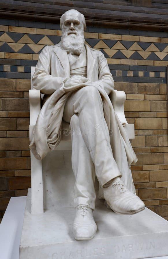 La statua di Charles Darwin fotografia stock libera da diritti