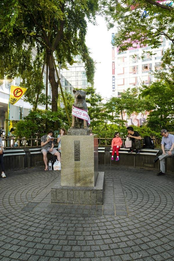 La statua di Hachiko a Shibuya Era un cane giapponese di Akita si è ricordato per la sua lealtà notevole al suo proprietario,  U fotografie stock libere da diritti