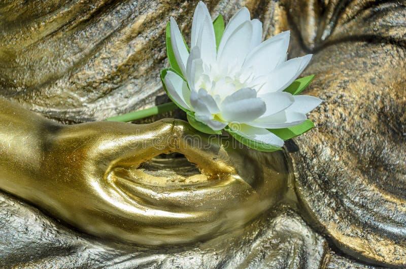 La statue de Bouddha, se ferment des mains pliées (Dhyana Mudra) avec une fleur photo libre de droits